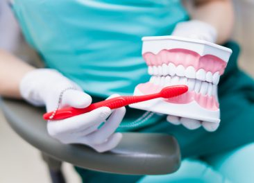 Woman dentist hygienist with gloves holding jaw model and teaching the right technique of cleaning teeth on a jaw model with red toothbrush in dentist office close-up photo. Showing how to clean the teeth with tooth brush properly and right